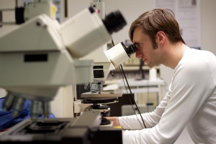 LMTB - Laser- und Medizin-Technologie GmbH Berlin
