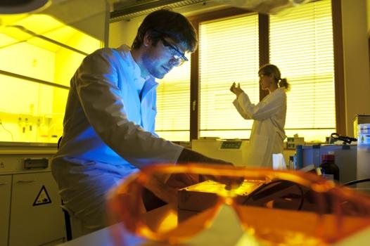 Bayerisches Zentrum für Angewandte Energieforschung e. V.
